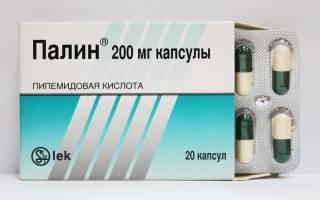Палин антибиотик или нет