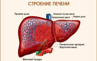 Болит печень после антибиотиков