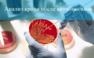 После антибиотиков анализ крови