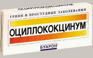 Оциллококцинум антибиотик или нет
